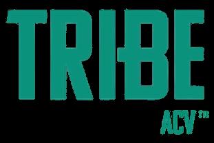 Tribe Partner